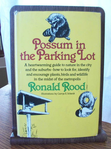 Image for Possum in the Parking Lot