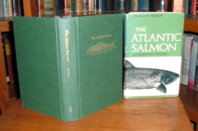 Image for The Atlantic Salmon: A Vanishing Species?
