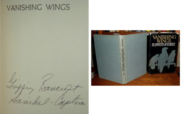 Image for Vanishing Wings