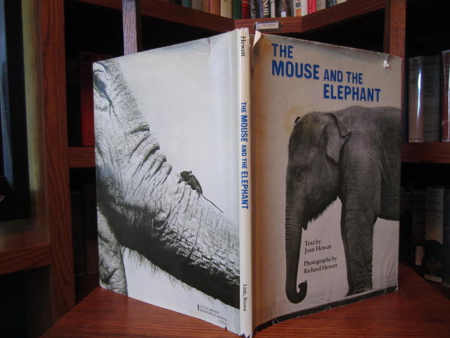 Image for The Mouse and the Elephant