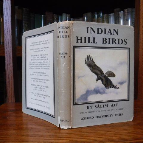 Image for Indian Hill Birds