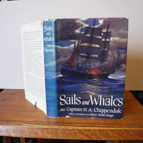 Image for Sails and Whales