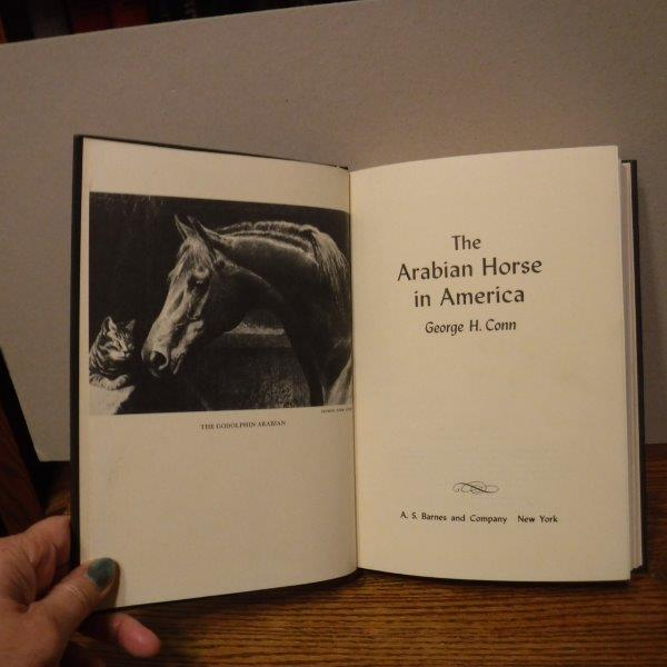 Image for The Arabian Horse in America