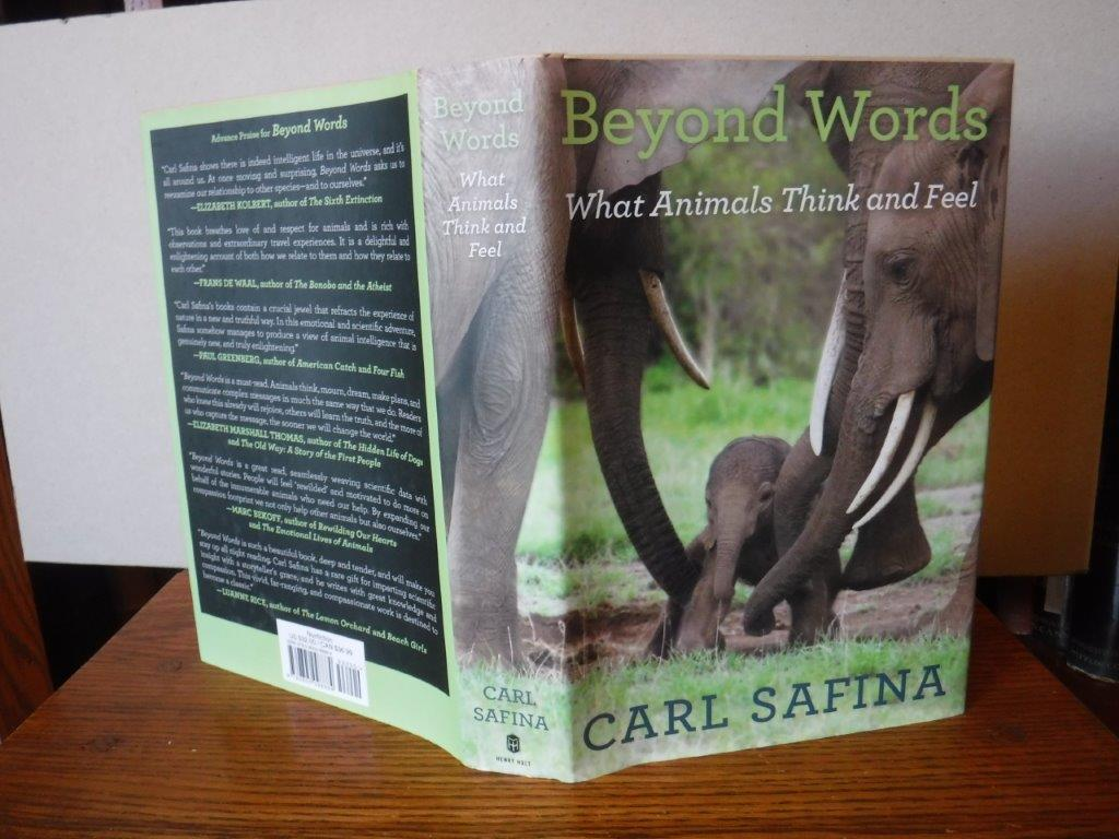 Image for Beyond Words: What Animals Think and Feel